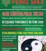 Universul Feng Shui Nr. 5 - PDF